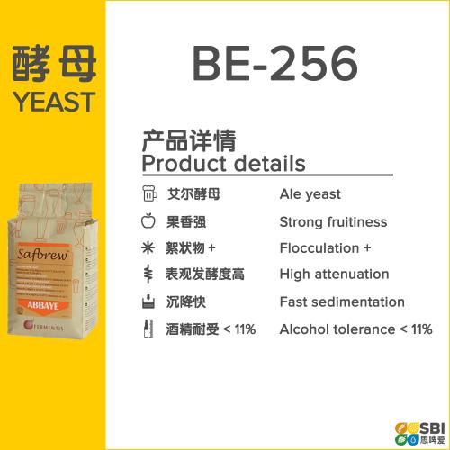 BE-256
