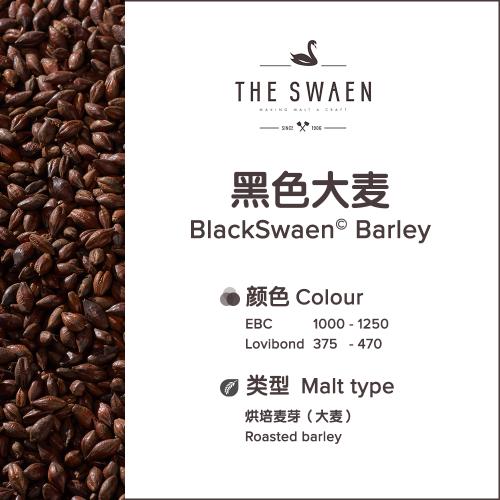 BlackSwaen©黑色大麦