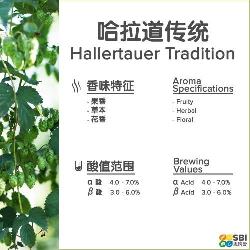 Hallertau Tradition
