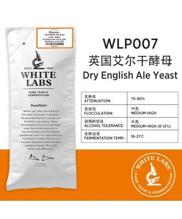 WLP007 干啤英式艾尔酵母