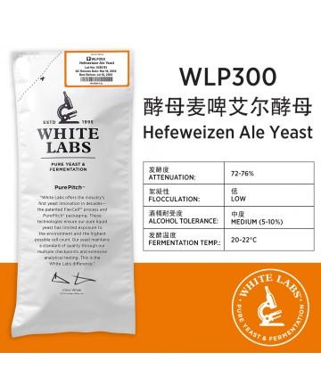 WLP300 酵母小麦啤艾尔酵母