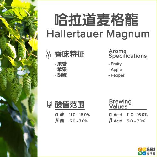Hallertau Magnum